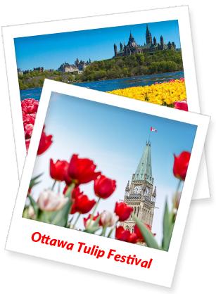 2020-Ottawa